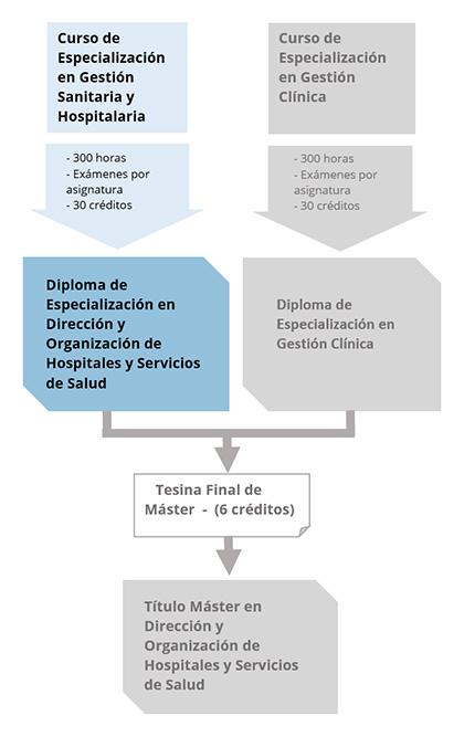 Diagrama del Diploma en Especialización en Dirección y Organización de Hospitales y Servicios de Salud