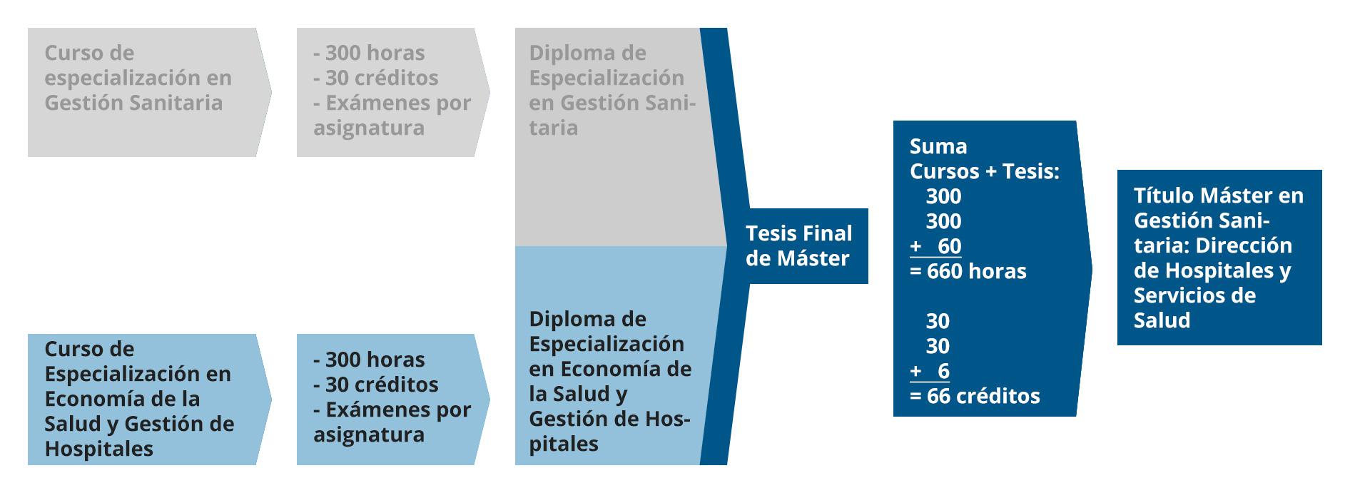 Diagrama del Diploma de Especialización en Economía de la Salud y Gestión de Hospitales