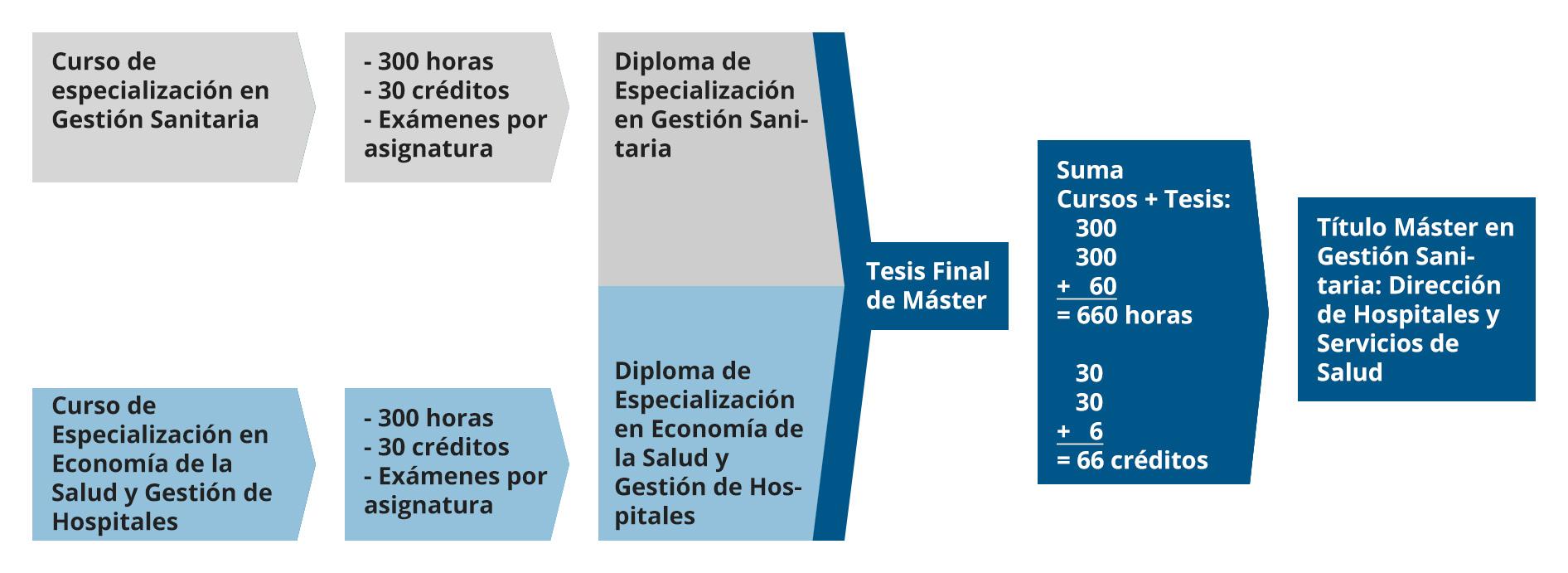 Diagrama completo del Máster en Gestión Sanitaria. Dirección de Hospitales y Servicios de Salud